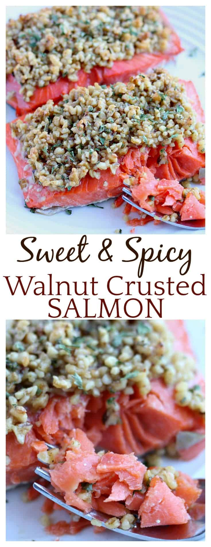 Another quick and easy dinner recipe! This Sweet & Spicy Walnut Crusted Salmon is an absolutely delicious recipe, especially when made with wild-caught Alaska salmon!