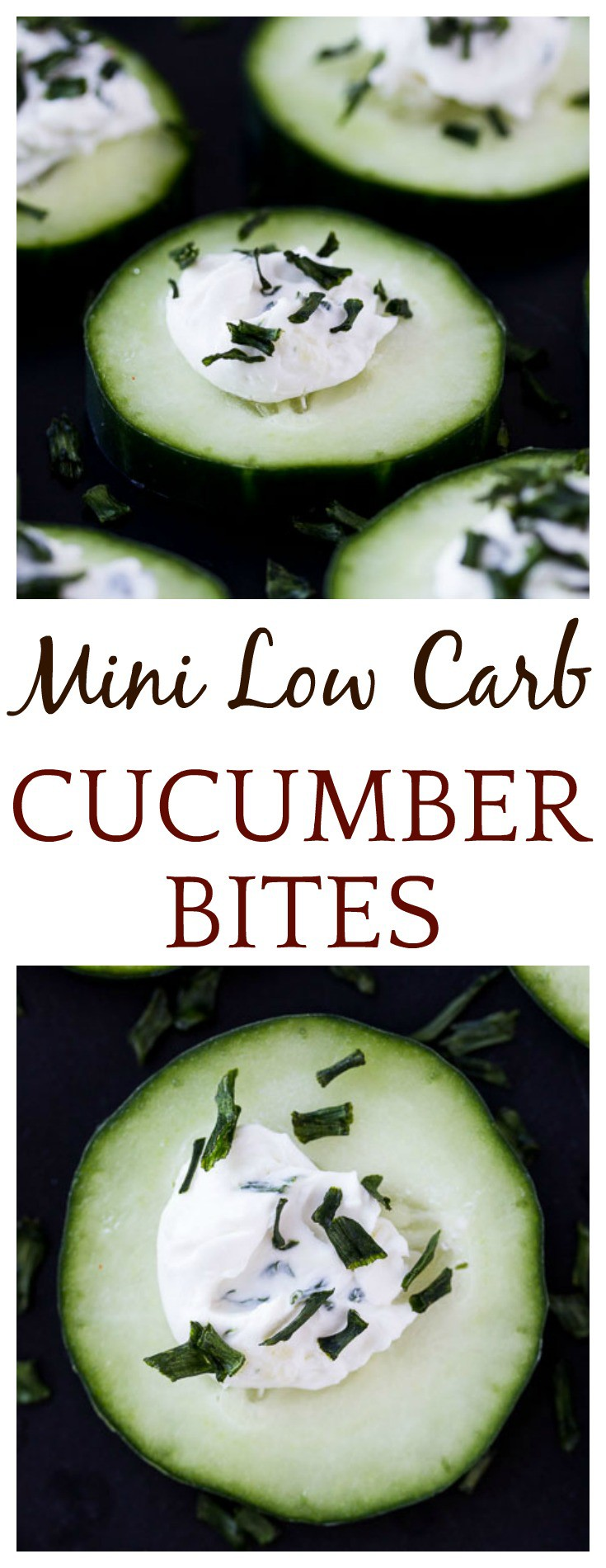 These Mini Low Carb Cucumber Bites are an easy appetizer recipe perfect for any Spring gathering! They are naturally gluten free as well! | #lowcarb #lowcarbappetizer #glutenfree #glutenfreeappetizer #dlbrecipes | appetizer recipes
