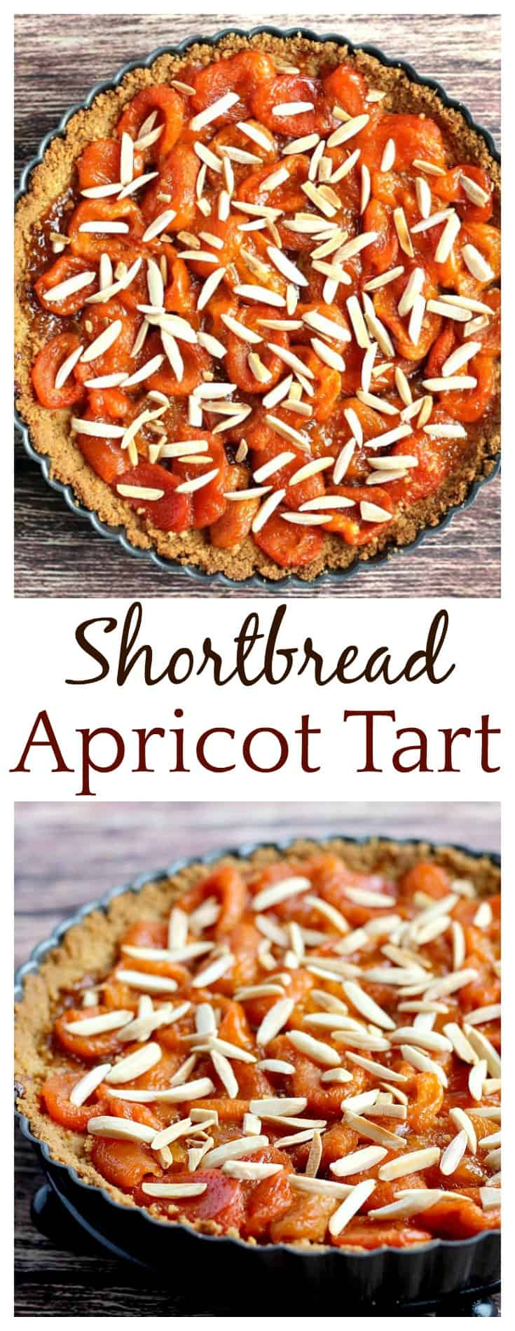 A Shortbread Apricot Tart is the perfect way to enjoy this delicious fruit! This recipe can be made with either dried or fresh apricots so that it can enjoyed year round!