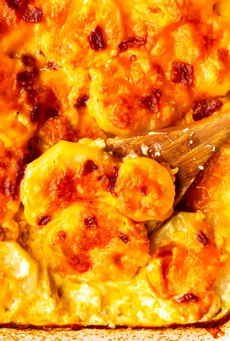 Close up of Au Gratin Potatoes with Bacon with a wooden spoon under a scoopful