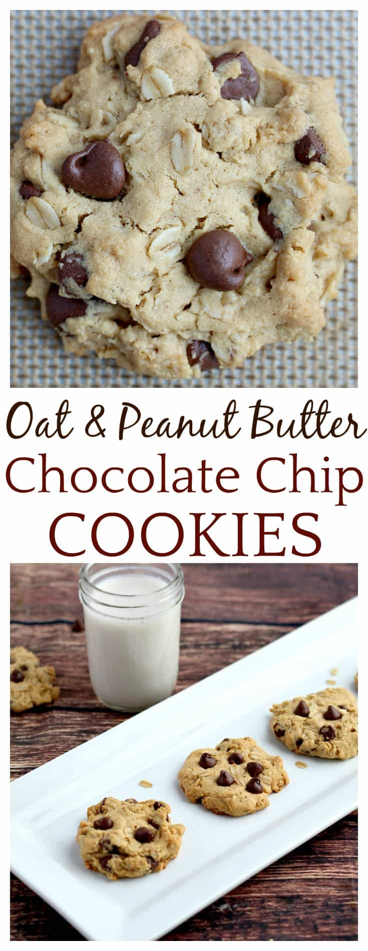 These Oat & Peanut Butter Chocolate Chip Cookies are my new favorite go-to cookie recipe! They are full of classic peanut butter and chocolate flavors. The oats give them texture while adding some whole grain goodness to the mix as well! If you try them, you are sure to love them! | #cookies #baking #chocolatechipcookies #peanutbutter #peanutbuttercookies #DLB