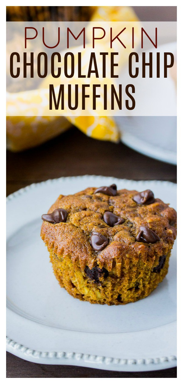 Pumpkin Chocolate Chip Muffins - spicy pumpkin and sweet chocolate combine in one deliciously moist muffin! These are the perfect Fall dessert or even as a grab and go breakfast! | #dlbrecipes #pumpkinspice #pumpkinmuffins #pumpkinspicemuffins #pumpkinchocolatechipmuffins