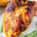 Close up of rosemary apricot glazed turkey