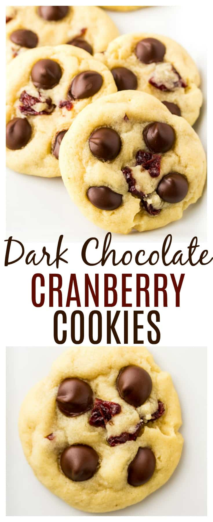 Dark Chocolate Chip Cranberry Cookies - soft, chewy, and incredibly delicious! Decadent enough for special occasions and Christmas cookie exchanges, yet simple enough to make just because! | #dlbrecipes #chocolatecranberry #cookies #dessert #christmascookies