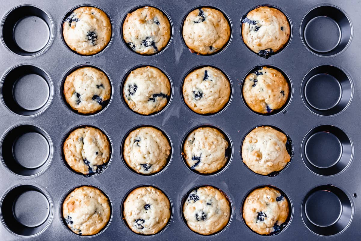 Blueberry oat muffins in a muffin pan
