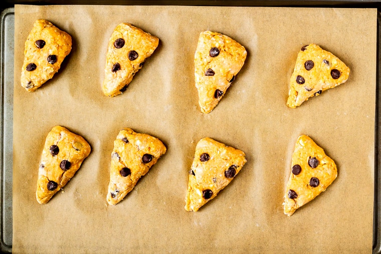 8 pumpkin chocolate chip scones on a parchment paper lined baking sheet prior to baking