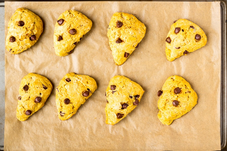 8 Baked pumpkin scones on a parchment paper lined baking sheet