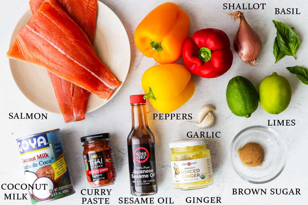 Ingredients to Make salmon curry on a white background
