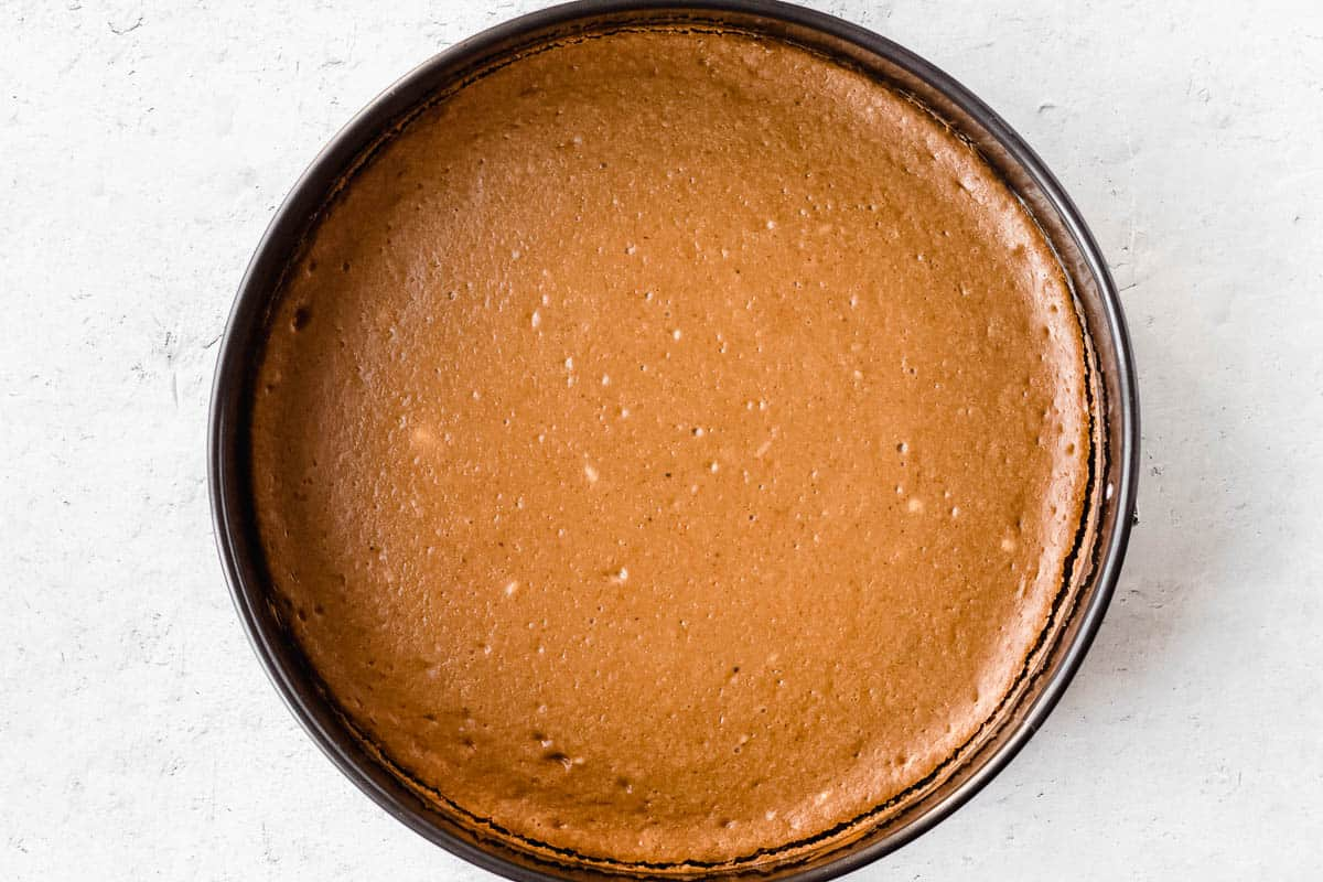 Baked gingerbread cheesecake in a springform pan over a white background