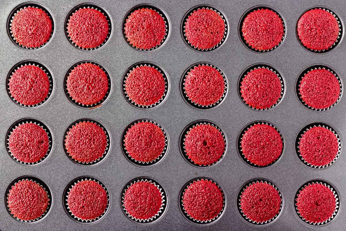 24 mini red velvet cupcakes baked in a mini cupcake pan
