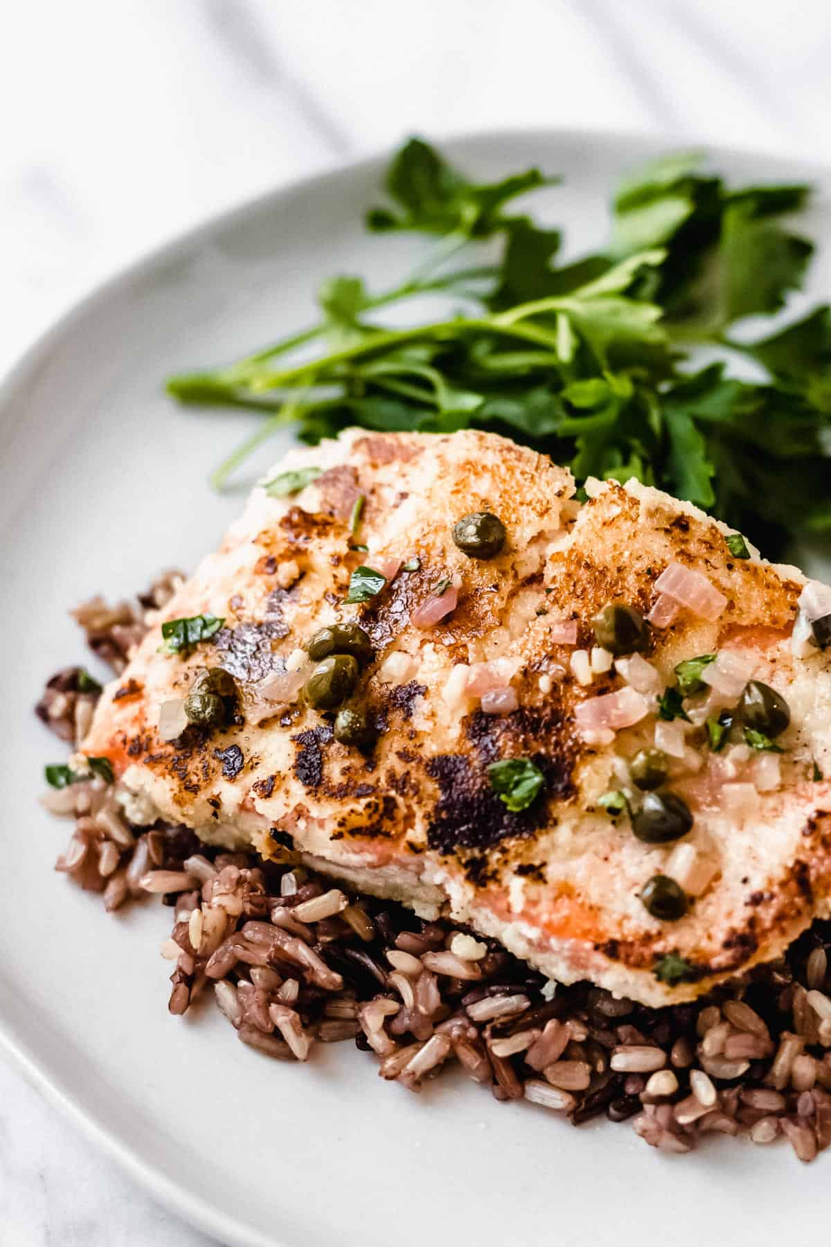 Close up of salmon piccata on a bed of wild rice with parsley on a white plate